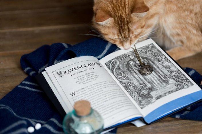 Livre Harry Potter édition spéciale